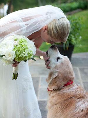 わんちゃんネコちゃんも大切な家族だから♡ペットと一緒に結婚式を! で紹介している画像