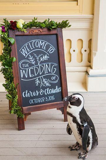 Wedding Tips|ウェディングのプロが届ける結婚式のアドバイス
