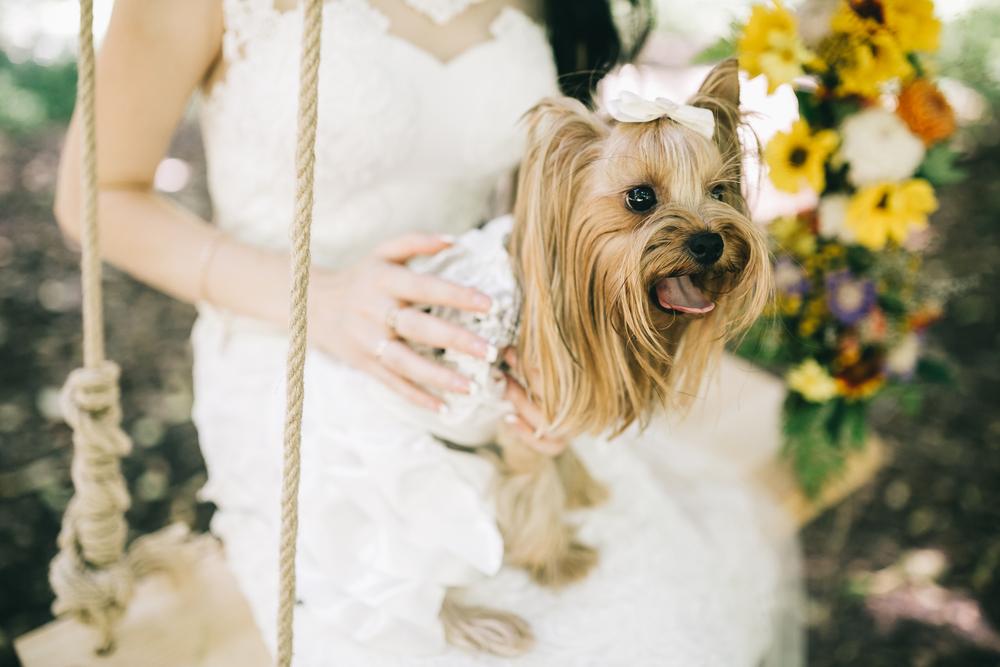 最強にフォトジェニック♡おしゃれ結婚式を叶えるならゲストハウスでのウェディング♡ で紹介している画像
